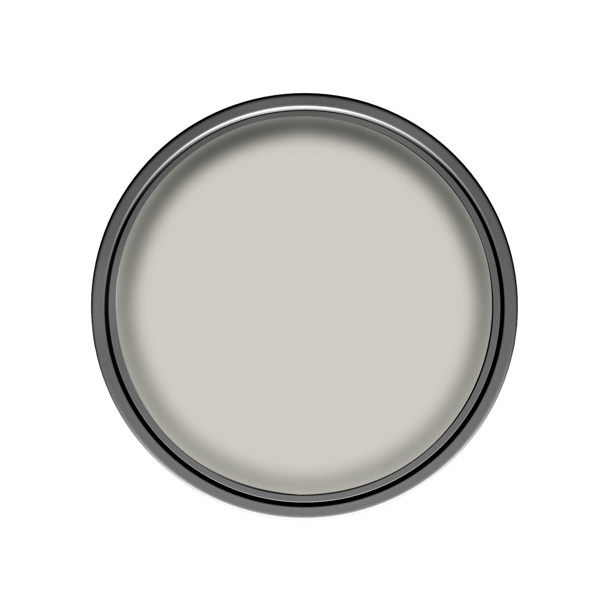 Dulux Pebble Shore Grey Paint